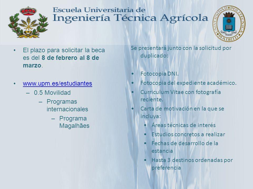 El plazo para solicitar la beca es del 8 de febrero al 8 de marzo. www.upm.es/estudiantes –0.5 Movilidad –Programas internacionales –Programa Magalhãe