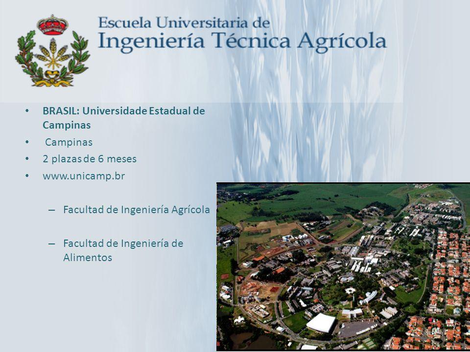 BRASIL: Universidade Estadual de Campinas Campinas 2 plazas de 6 meses www.unicamp.br – Facultad de Ingeniería Agrícola – Facultad de Ingeniería de Al