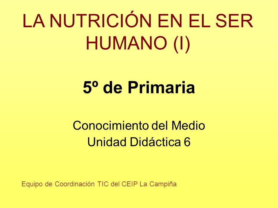 5º de Primaria Conocimiento del Medio Unidad Didáctica 6 LA NUTRICIÓN EN EL SER HUMANO (I) Equipo de Coordinación TIC del CEIP La Campiña