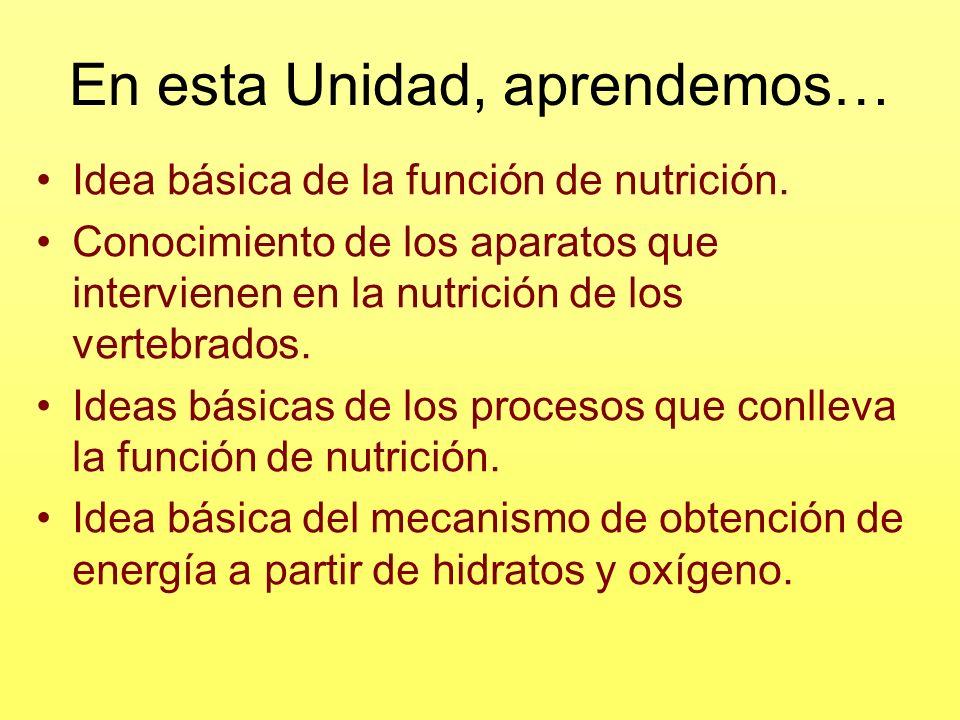 En esta Unidad, aprendemos… Idea básica de la función de nutrición. Conocimiento de los aparatos que intervienen en la nutrición de los vertebrados. I