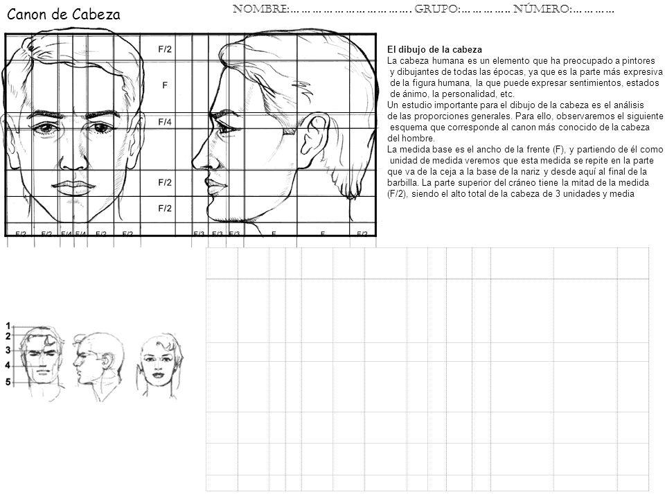 Canon de Cabeza El dibujo de la cabeza La cabeza humana es un elemento que ha preocupado a pintores y dibujantes de todas las épocas, ya que es la par