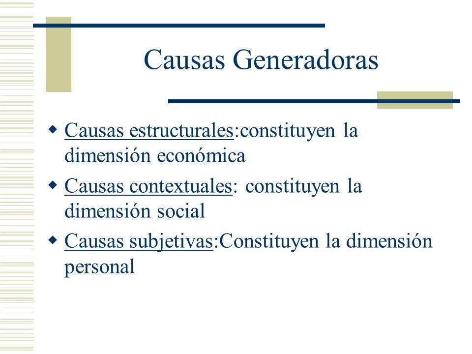 Causas Generadoras Causas estructurales:constituyen la dimensión económica Causas contextuales: constituyen la dimensión social Causas subjetivas:Cons