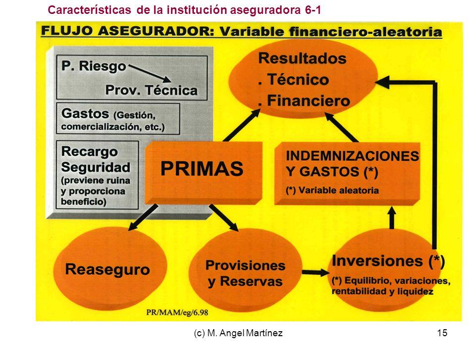 (c) M. Angel Martínez15 Características de la institución aseguradora 6-1