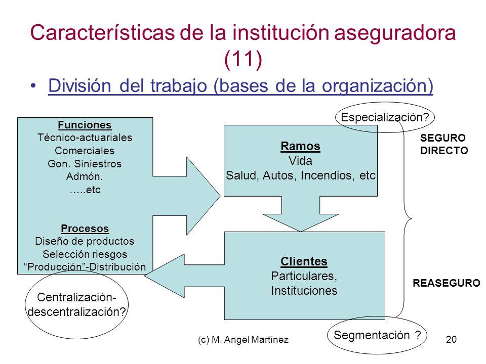 (c) M. Angel Martínez20 Características de la institución aseguradora (11) División del trabajo (bases de la organización) Funciones Técnico-actuarial