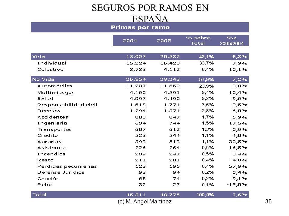 (c) M. Angel Martínez35 SEGUROS POR RAMOS EN ESPAÑA