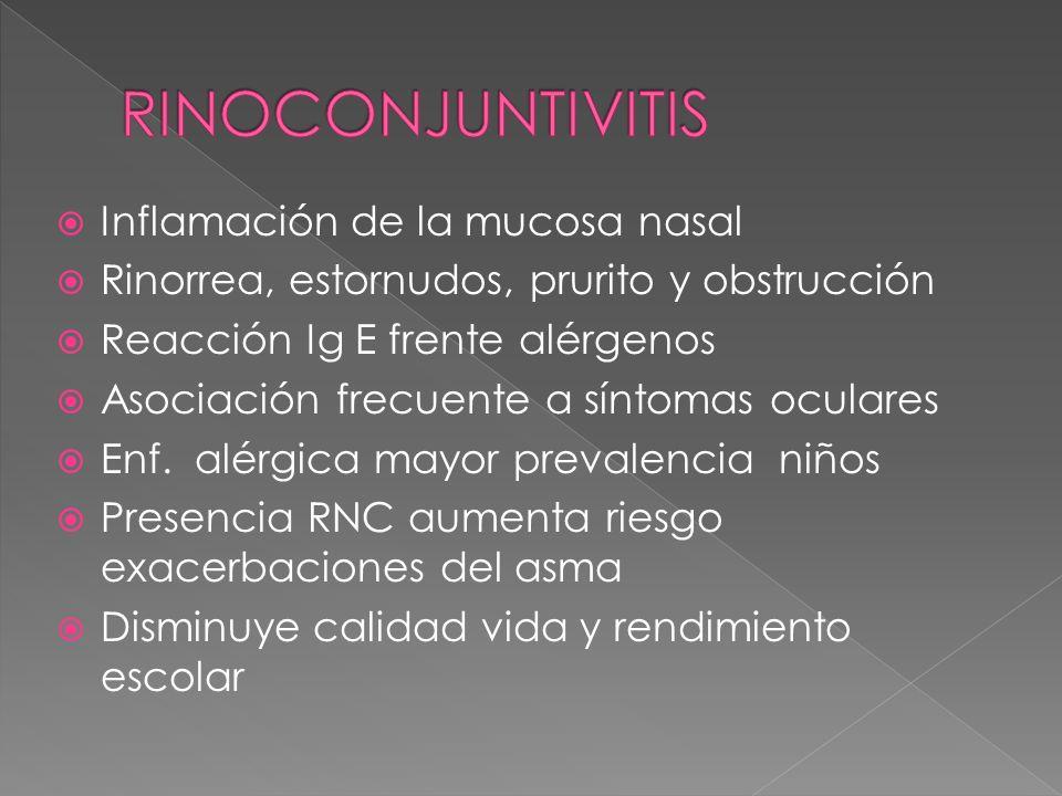 Inflamación de la mucosa nasal Rinorrea, estornudos, prurito y obstrucción Reacción Ig E frente alérgenos Asociación frecuente a síntomas oculares Enf