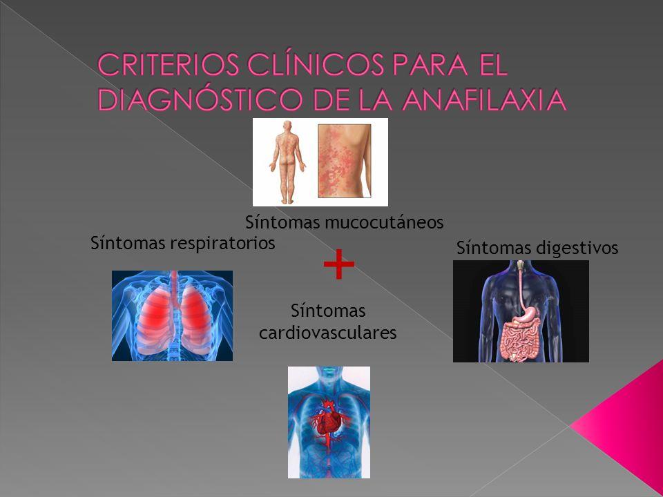 + Síntomas mucocutáneos Síntomas respiratorios Síntomas digestivos Síntomas cardiovasculares