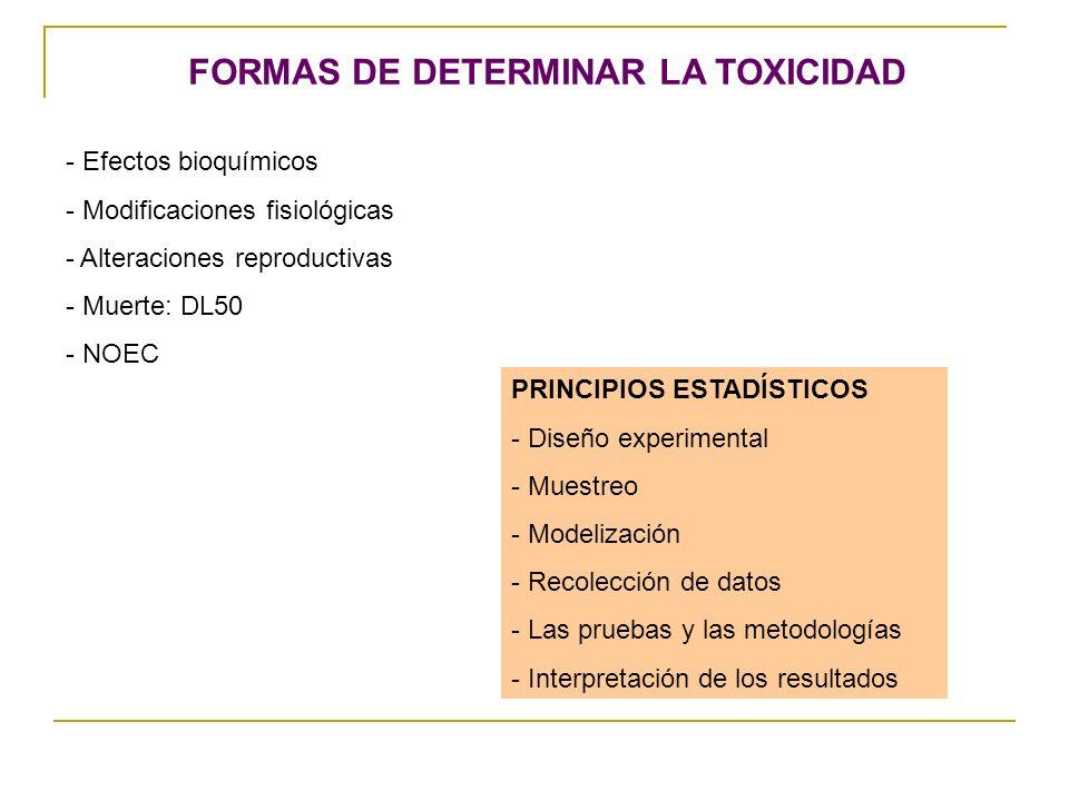 FORMAS DE DETERMINAR LA TOXICIDAD - Efectos bioquímicos - Modificaciones fisiológicas - Alteraciones reproductivas - Muerte: DL50 - NOEC PRINCIPIOS ES