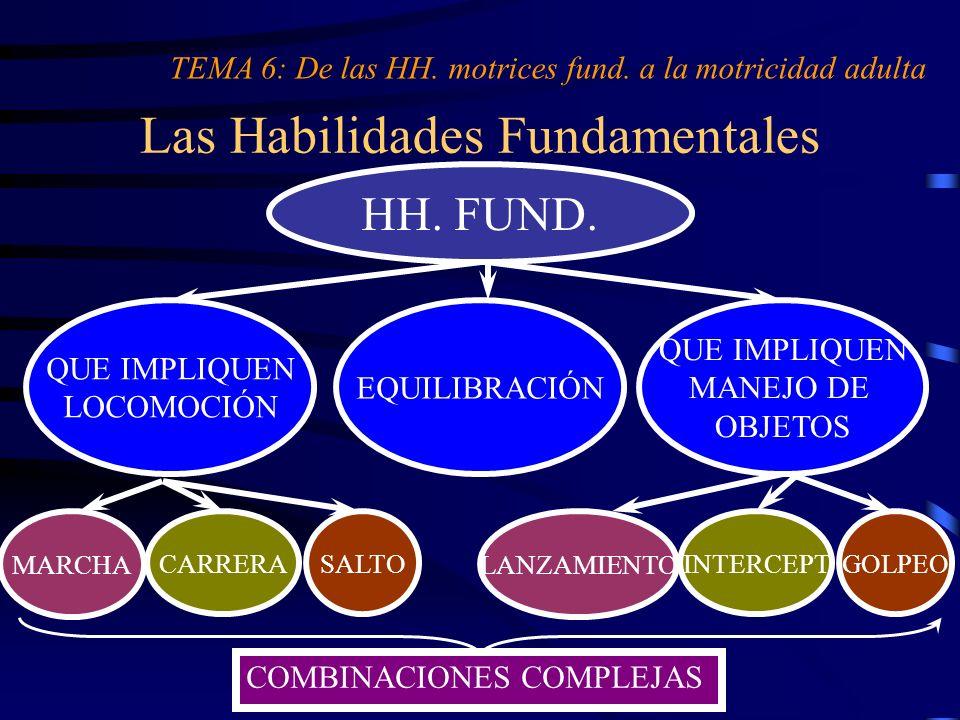 Las Habilidades Fundamentales TEMA 6: De las HH. motrices fund. a la motricidad adulta HH. FUND. QUE IMPLIQUEN MANEJO DE OBJETOS MARCHA CARRERASALTO E