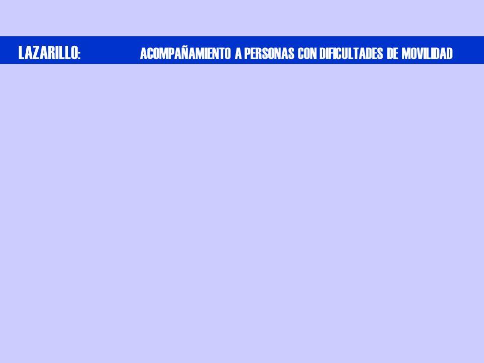 LAZARILLO : ACOMPAÑAMIENTO A PERSONAS CON DIFICULTADES DE MOVILIDAD
