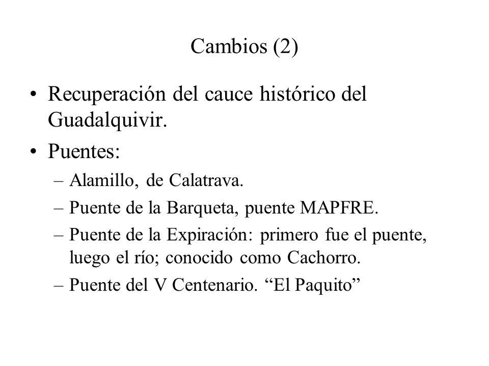 Cambios (2) Recuperación del cauce histórico del Guadalquivir. Puentes: –Alamillo, de Calatrava. –Puente de la Barqueta, puente MAPFRE. –Puente de la