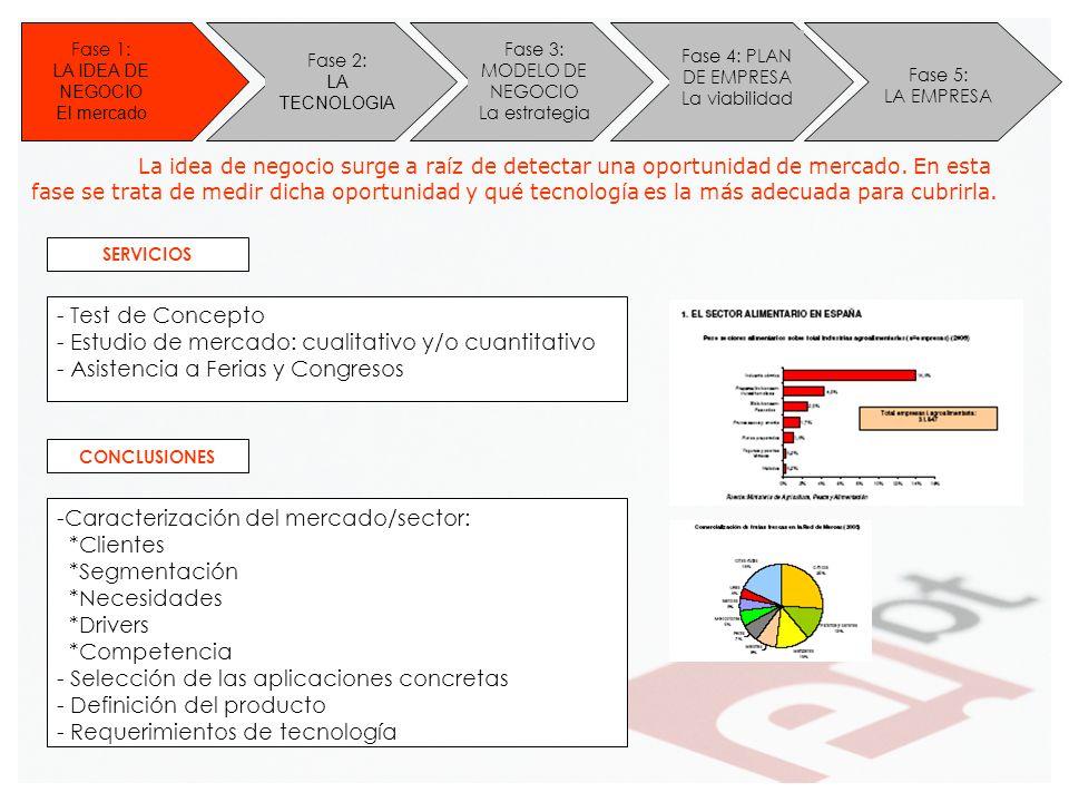 Fase 3: MODELO DE NEGOCIO La estrategia Fase 4: PLAN DE EMPRESA La viabilidad Fase 5: LA EMPRESA - Test de Concepto - Estudio de mercado: cualitativo