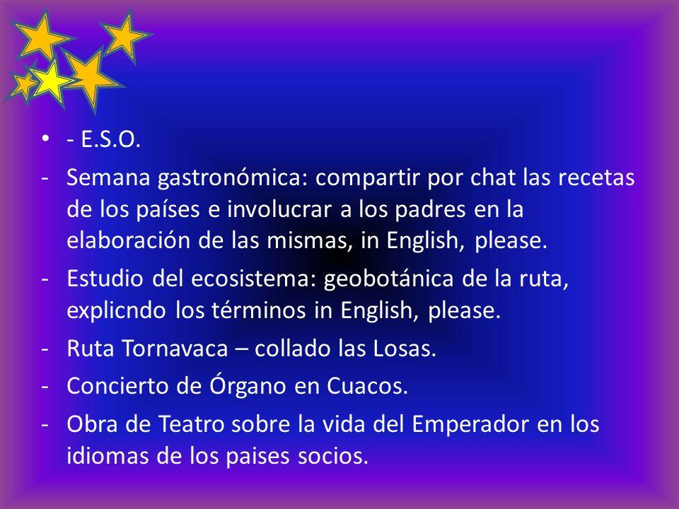 - E.S.O. -Semana gastronómica: compartir por chat las recetas de los países e involucrar a los padres en la elaboración de las mismas, in English, ple