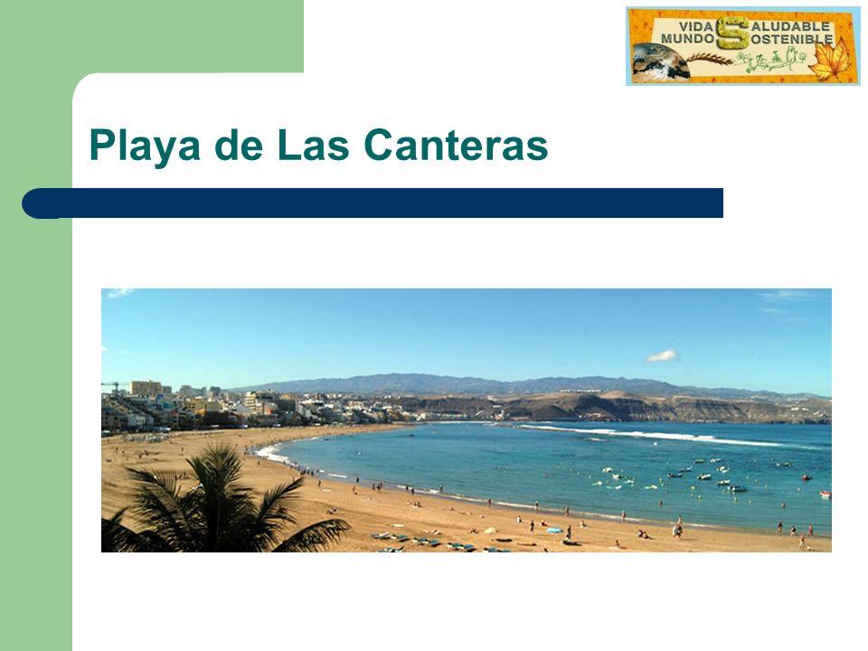Miércoles 10 Desayuno Visita Sur de la Isla: Dunas de Maspalomas Regreso al albergue Gymkana urbana en Vegueta Cena