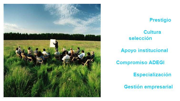 Prestigio Cultura selección Apoyo institucional Compromiso ADEGI Especialización Gestión empresarial