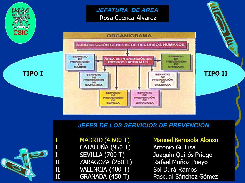 9 TIPO I TIPO II JEFATURA DE AREA Rosa Cuenca Alvarez JEFES DE LOS SERVICIOS DE PREVENCIÓN IMADRID(4.600 T)Manuel Bernaola Alonso ICATALUÑA (950 T)Ant