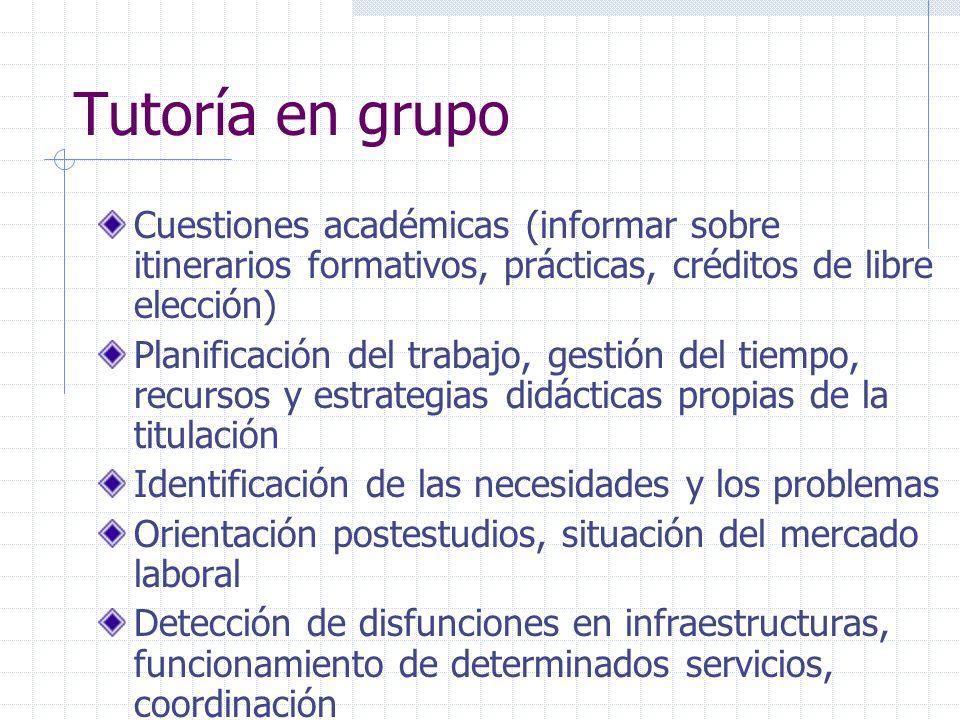Tutoría en grupo Cuestiones académicas (informar sobre itinerarios formativos, prácticas, créditos de libre elección) Planificación del trabajo, gesti