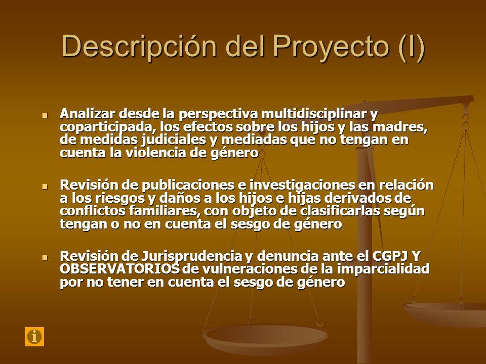 Descripción del Proyecto (I) Analizar desde la perspectiva multidisciplinar y coparticipada, los efectos sobre los hijos y las madres, de medidas judi