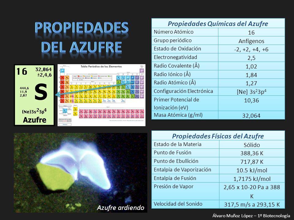 Azufre vapor Predominan las moléculas S 8 445 ºC Álvaro Muñoz López – 1º Biotecnología