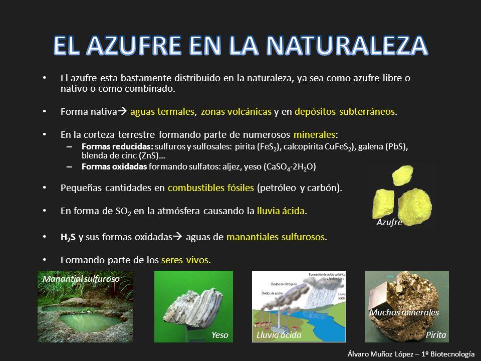 El azufre esta bastamente distribuido en la naturaleza, ya sea como azufre libre o nativo o como combinado. Forma nativa aguas termales, zonas volcáni