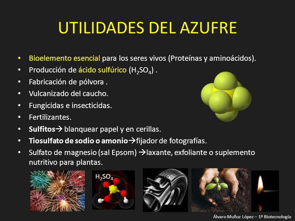 UTILIDADES DEL AZUFRE Bioelemento esencial para los seres vivos (Proteínas y aminoácidos). Producción de ácido sulfúrico (H 2 SO 4 ). Fabricación de p