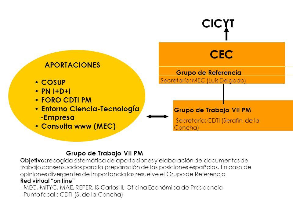 CICYT CEC Grupo de Referencia Secretaría: MEC (Luis Delgado) Grupo de Trabajo VII PM Secretaría: CDTI (Serafín de la Concha) APORTACIONES COSUP PN I+D