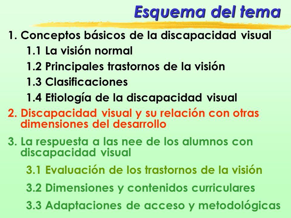 1.3 Clasificación SEGÚN POSIBILIDADES EDUCATIVAS - 2 Ciegos: º Ausencia total de visión o simple visión de luz Personas con baja visión: º Limitaciones de visión en función de sus restos visuales º Dificultades variadas