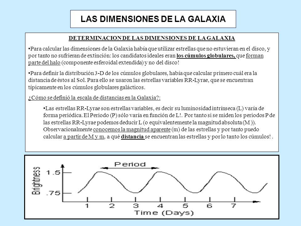LAS DIMENSIONES DE LA GALAXIA DETERMINACION DE LAS DIMENSIONES DE LA GALAXIA Para calcular las dimensiones de la Galaxia había que utilizar estrellas que no estuvieran en el disco, y por tanto no sufrieran de extinción: los candidatos ideales eran los cúmulos globulares, que forman parte del halo (componente esferoidal extendida) y no del disco.