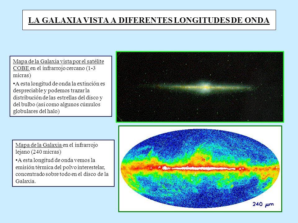 LA GALAXIA VISTA A DIFERENTES LONGITUDES DE ONDA Mapa de la Galaxia vista por el satélite COBE en el infrarrojo cercano (1-3 micras) A esta longitud de onda la extinción es despreciable y podemos trazar la distribución de las estrellas del disco y del bulbo (así como algunos cúmulos globulares del halo) Mapa de la Galaxia en el infrarrojo lejano (240 micras) A esta longitud de onda vemos la emisión térmica del polvo interestelar, concentrado sobre todo en el disco de la Galaxia.
