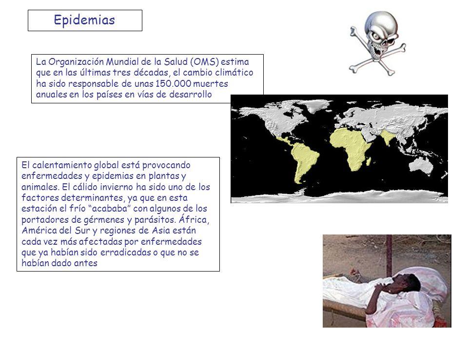 Epidemias La Organización Mundial de la Salud (OMS) estima que en las últimas tres décadas, el cambio climático ha sido responsable de unas 150.000 mu