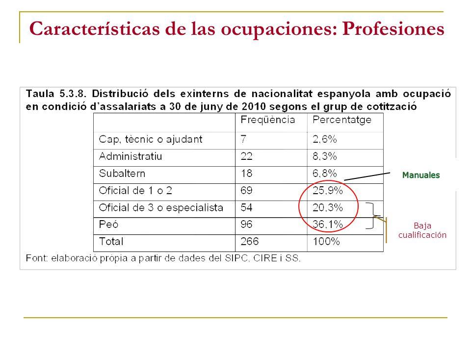 Características de las ocupaciones: Profesiones Baja cualificación