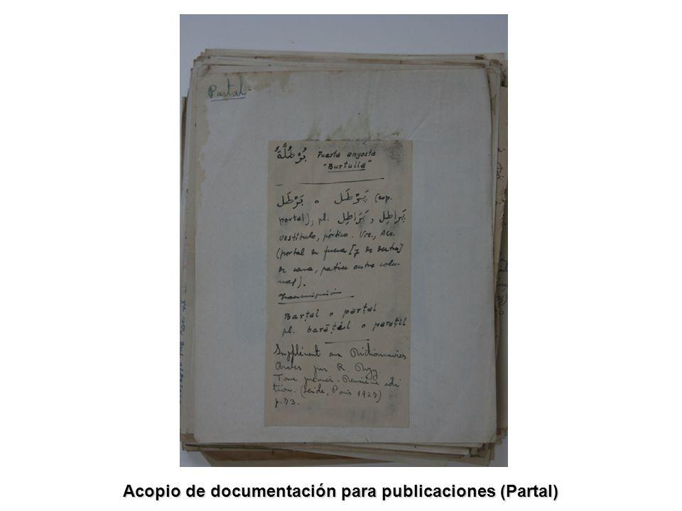 Acopio de documentación para publicaciones (Partal)