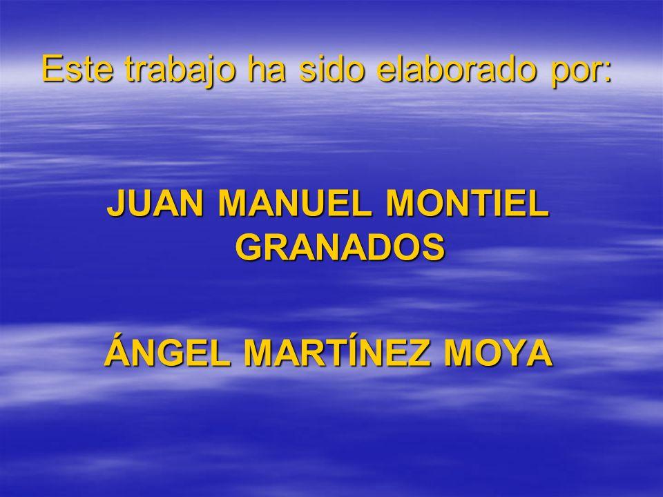 Este trabajo ha sido elaborado por: JUAN MANUEL MONTIEL GRANADOS ÁNGEL MARTÍNEZ MOYA
