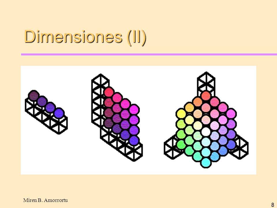 Miren B. Amorrortu 8 Dimensiones (II)