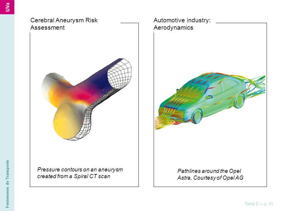 Fenómenos de Transporte Tema 2 p. 31 Pressure contours on an aneurysm created from a Spiral CT scan Cerebral Aneurysm Risk Assessment Pathlines around