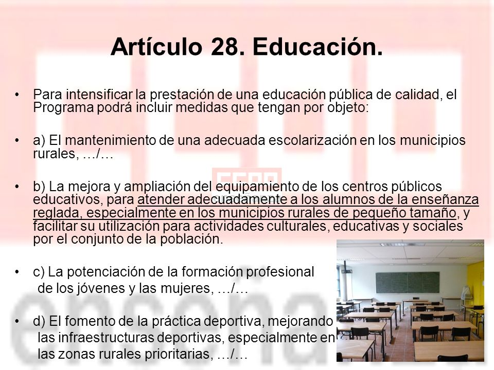 Artículo 28.Educación.