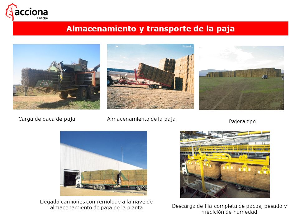 Almacenamiento y transporte de la paja Almacenamiento de la paja Pajera tipo Llegada camiones con remolque a la nave de almacenamiento de paja de la p