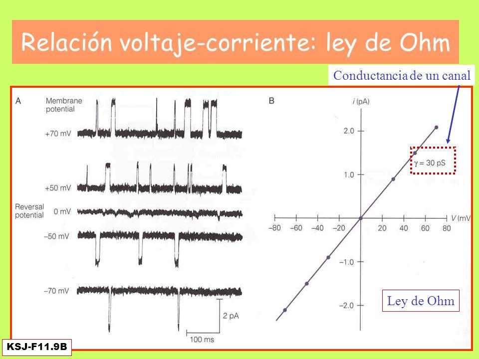 KSJ-F11.10 el canal que se cierra La corriente total es la suma de las individuales