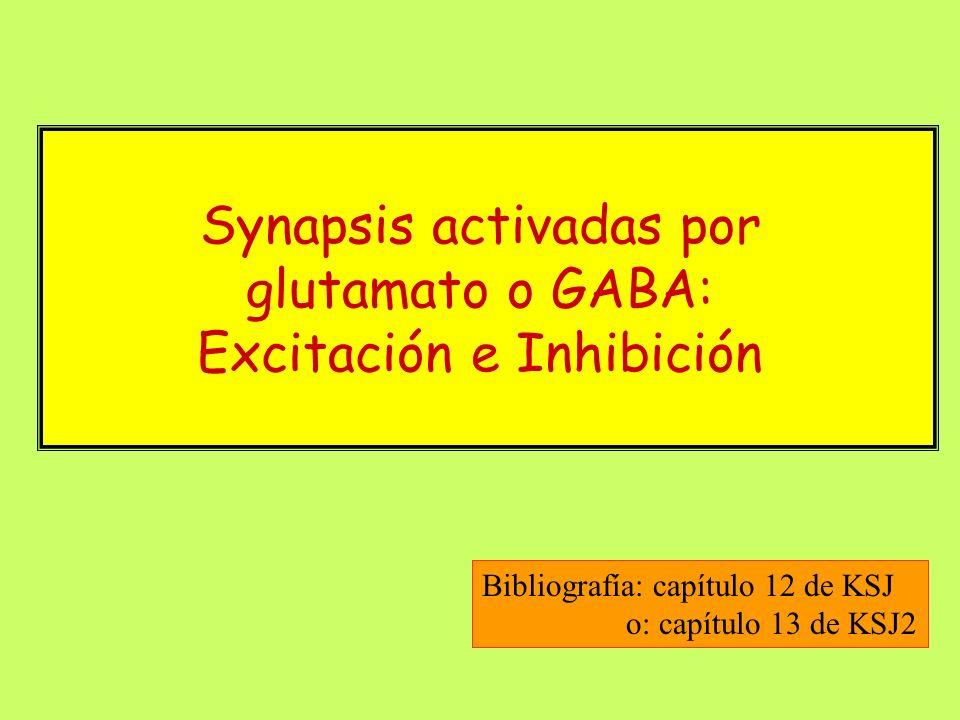 Corrientes unitarias: comparación entre activación por GABA, glicina y NMDA (Patch clamp)
