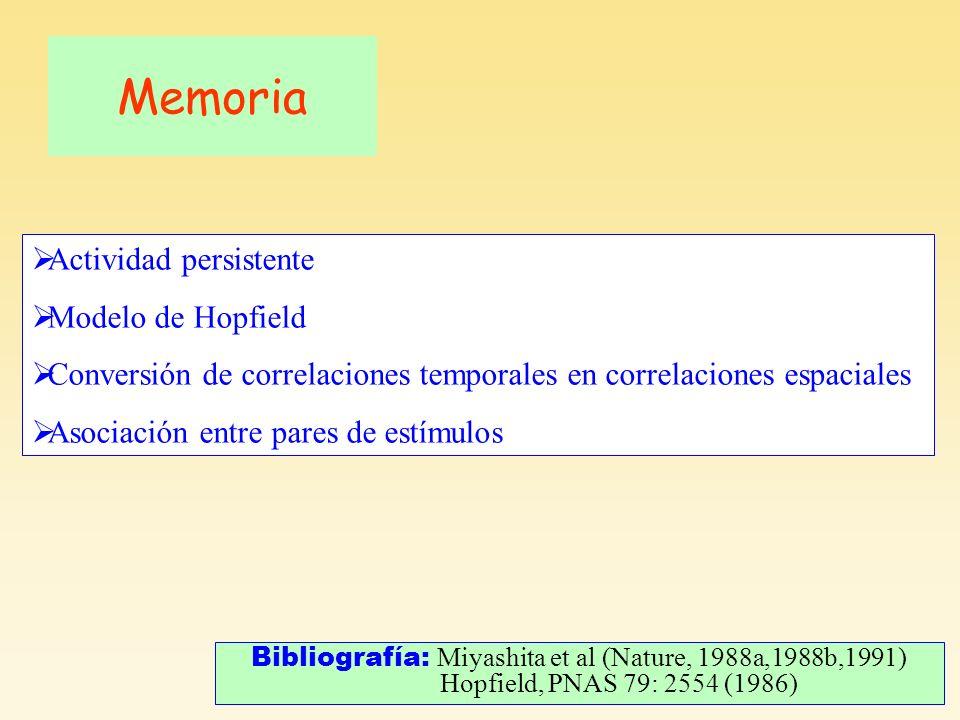 Memoria Bibliografía: Miyashita et al (Nature, 1988a,1988b,1991) Hopfield, PNAS 79: 2554 (1986) Actividad persistente Modelo de Hopfield Conversión de correlaciones temporales en correlaciones espaciales Asociación entre pares de estímulos