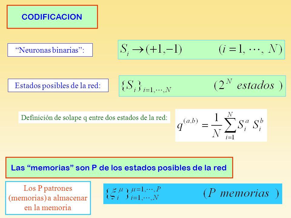 Neuronas binarias: Estados posibles de la red: Codificación CODIFICACION Definición de solape q entre dos estados de la red: Los P patrones (memorias) a almacenar en la memoria Las memorias son P de los estados posibles de la red