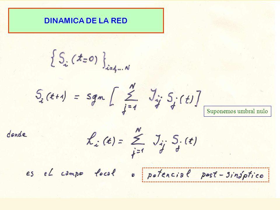 DINAMICA DE LA RED Suponemos umbral nulo