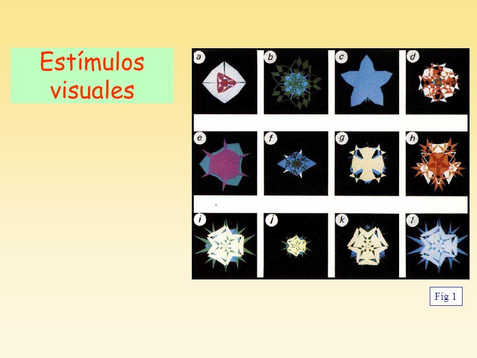 Estímulos visuales Fig 1