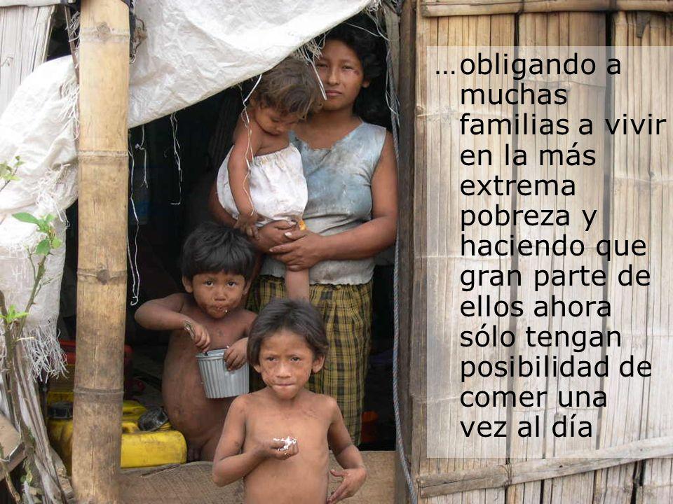 …obligando a muchas familias a vivir en la más extrema pobreza y haciendo que gran parte de ellos ahora sólo tengan posibilidad de comer una vez al dí