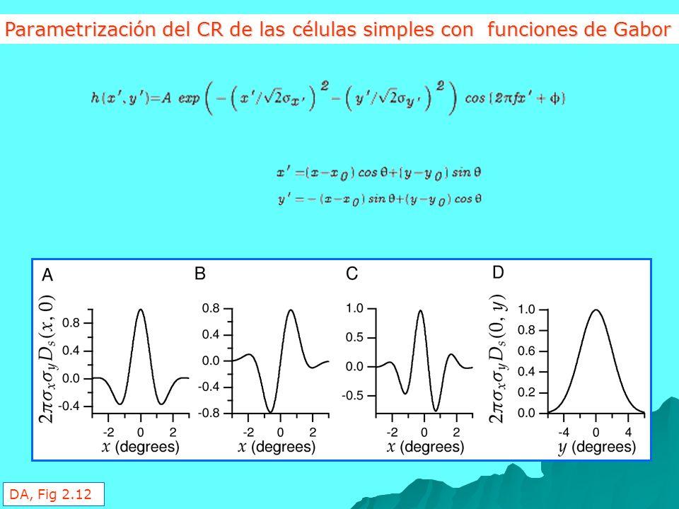 Parametrización del CR de las células simples con funciones de Gabor DA, Fig 2.12