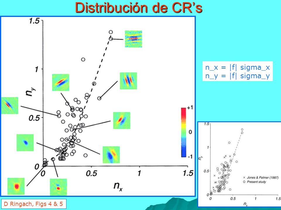 Distribución de CRs n_x = |f| sigma_x n_y = |f| sigma_y D Ringach, Figs 4 & 5