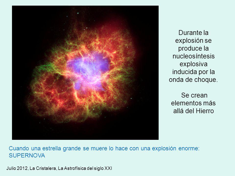 Cuando una estrella grande se muere lo hace con una explosión enorme: SUPERNOVA Durante la explosión se produce la nucleosíntesis explosiva inducida p