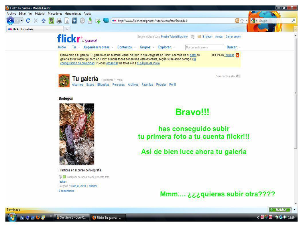 Bravo!!! has conseguido subir tu primera foto a tu cuenta flickr!!! Así de bien luce ahora tu galería Mmm.... ¿¿¿quieres subir otra????