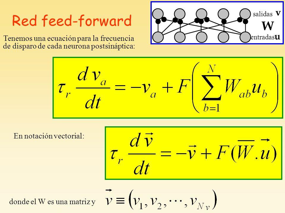 Red feed-forward Tenemos una ecuación para la frecuencia de disparo de cada neurona postsináptica: En notación vectorial: salidas entradas donde el W