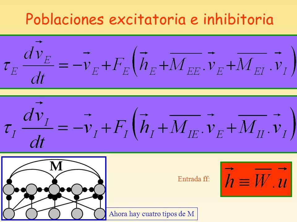 Poblaciones excitatoria e inhibitoria Ahora hay cuatro tipos de M Entrada ff: